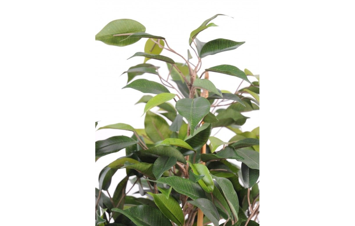 Plante artificielle ficus tropical 60 cm decome store for Plante artificielle