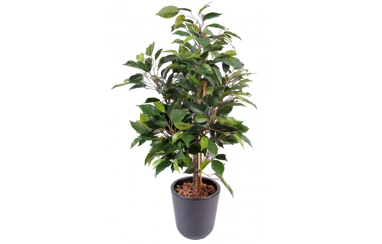 Plante artificielle ficus tropical 60 cm decome store for Plante arbuste