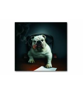 Tableau animaux Chien bulldog avec cigare 50x50 cm DOGCY