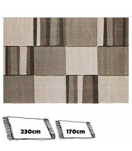 Tapis tons clairs beige et taupe rectangulaire