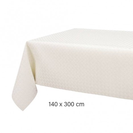 Sous nappe au m tre 140 x 300 protection de table - Nappe phreatique sous maison ...