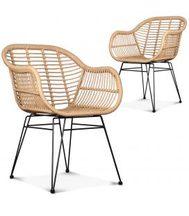 Fauteuil chaise style rotin et fer forgé noir Caty - Lot de 2