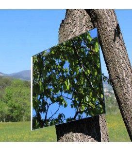Miroir décoratif d'arbre extérieur 40cm