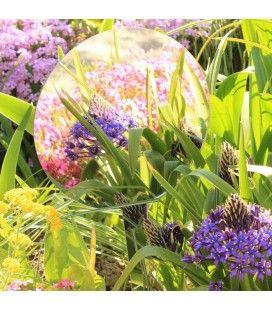 Miroir de jardin à planter 20cm rond