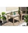 Table d'appoint carrée béton 50x50cm pieds Acacia marron HECTOR