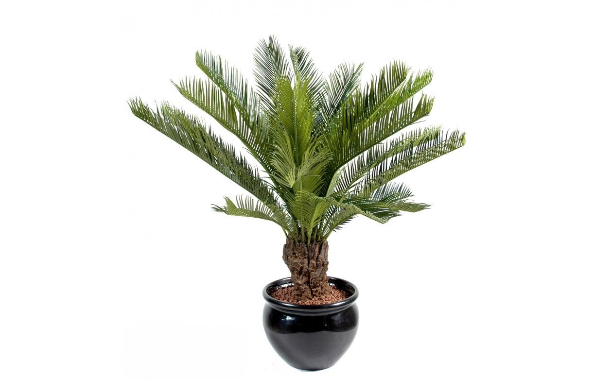 Plante artificielle tropicale palmier cycas 90 cm decome for Plante arbuste interieur