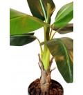 Plante artificielle tropicale Bananier 105 cm -